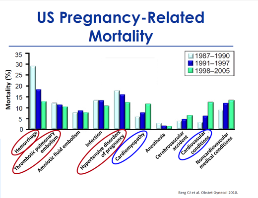 Pregnancy related mortality small