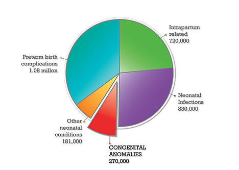 Neonatal deaths