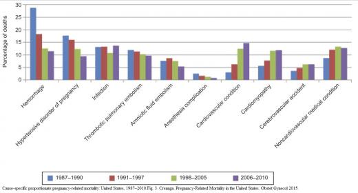 Maternal mortality causes 1987-2010