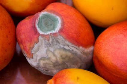 Bad Peach